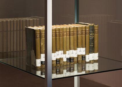 בִּיבְּלִיוֹלוֹגְיָה: הספר כגוף