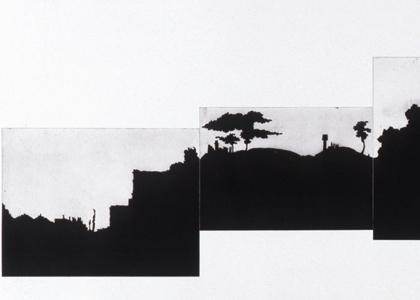 נוף חתום: דפוסים של ייצוג
