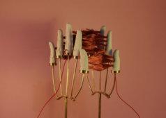 שיח גלריה בתערוכת 'עבודת צוות'