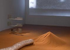מפגש עם האמנית אלה ליטביץ והאוצרת אור תשובה