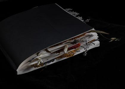 שיח גלריה בהשתתפות האמנית נעמי סלייני ואוצרת התערוכה אור תשובה